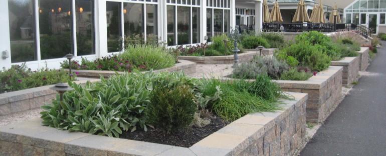 Creating Memory Care Gardens