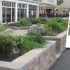 Foulkeways CCRC Herb Garden