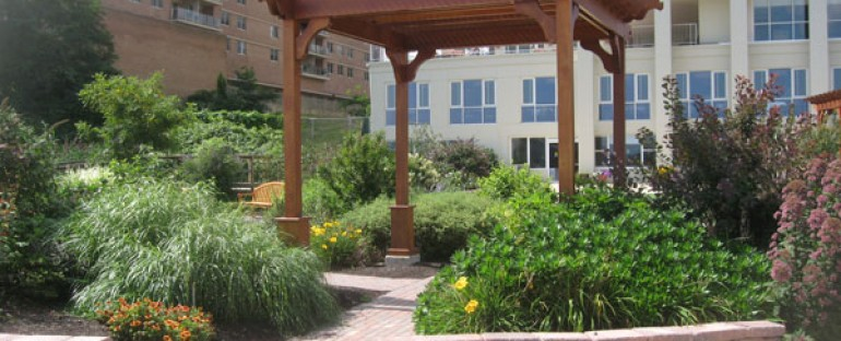 The Use and Enjoyment of Therapeutic Gardens