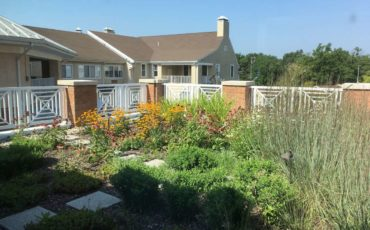 The residents in Assisted Living have a view of the rooftop garden from their dining room.  They love watching the birds and butterflies, as well as enjoying the flowers in bloom.