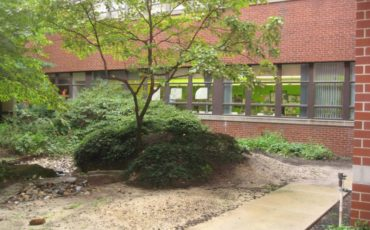 The Therapeutic Garden courtyard before renovations began