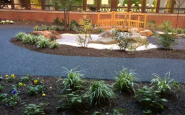 Horticultural Therapy is an important component of the healing garden at Virtua Camden Hospital