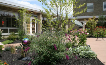 Sensory plants attract nature into the garden for residents enjoyment