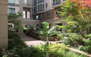Courtyard Garden is visible from the interior resident rooms